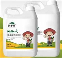 奥丰源含氨基酸水溶性肥料,抗病抗逆提高座果率