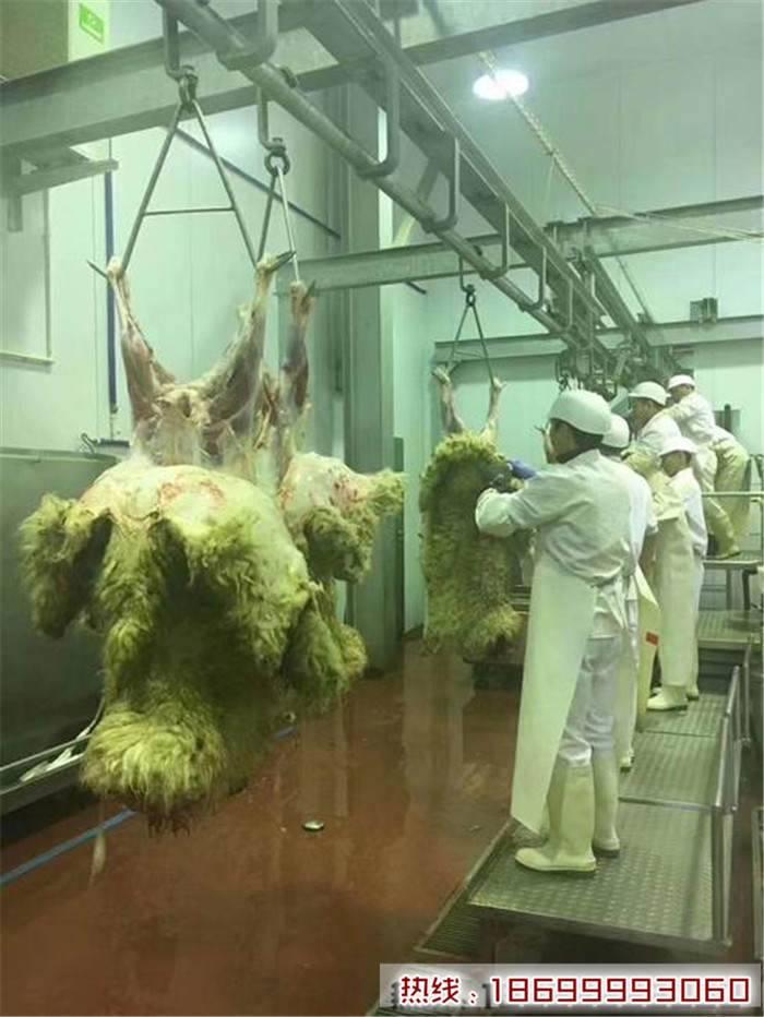 哈萨克斯坦进口羊肉利润 哈萨克斯坦羊肉进口哪里卖