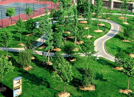 乌鲁木齐市输变电工程公司,园林绿化公司,环保工程公司加盟合作