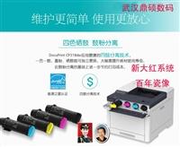 江苏激光高温墓碑瓷像打印机设备
