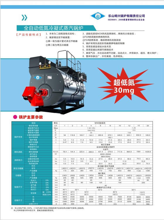 低氮冷凝式蒸汽��t
