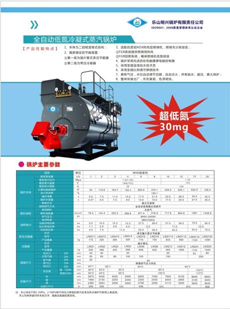 乐山锅炉/青青国产锅炉/燃气锅炉