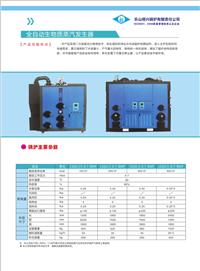 四川生物质锅炉、青青国产发生器