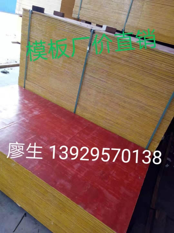 鼎湖建筑模板廠家直銷