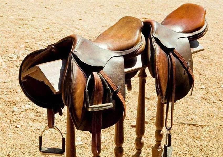 狠狠撸在纽olzfh�f/Z�p_第二个则是马镫的使用,它通过固定双脚提供横向稳定性,同时在马鞍的
