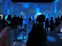 安慶3D錯覺藝術館怎么加盟