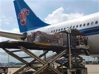 乐清航空货运出发、乐清柳市航空托运订舱、永嘉国内空运配载电话