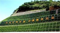 边坡支护绿化喷播机安丘资讯
