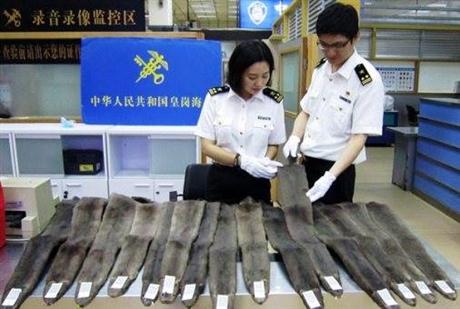 上海机场报关费用海鲜进口清关