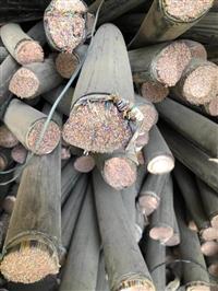 佳木斯廢通訊電纜回收 廢舊通訊電纜線回收廠家