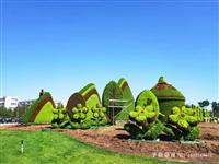 五色草造型建國70周年-予你景觀綠雕廠家可以定制