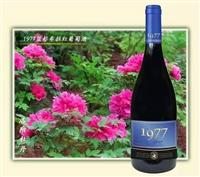 智利1977红葡萄酒智利小支酒批发