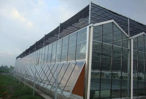 专业定做玻璃温室大棚定做