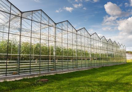 上海玻璃温室费用