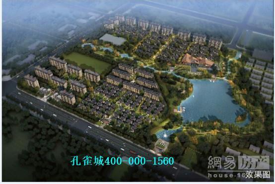 上海孔雀城是一家什么样的公司