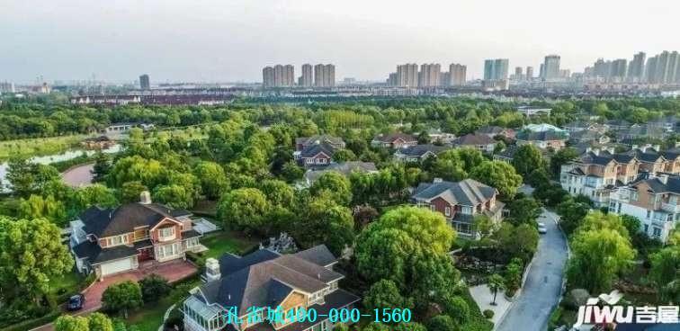 你知道问什么上海孔雀城连续三天在新闻一套霸屏吗