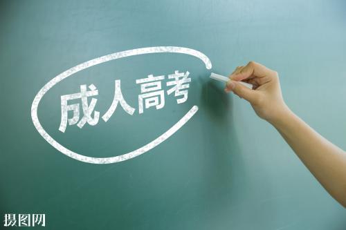 专业从事成人高考 成人高考 全国供应