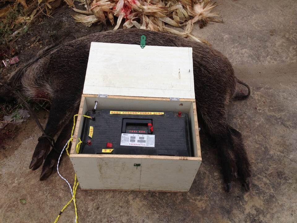 桂林捕猎机价格 安全性高