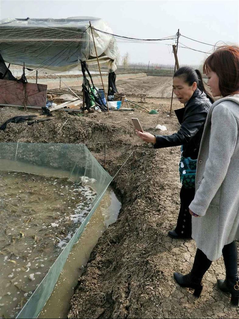 上海知名泥鳅养殖技术厂家