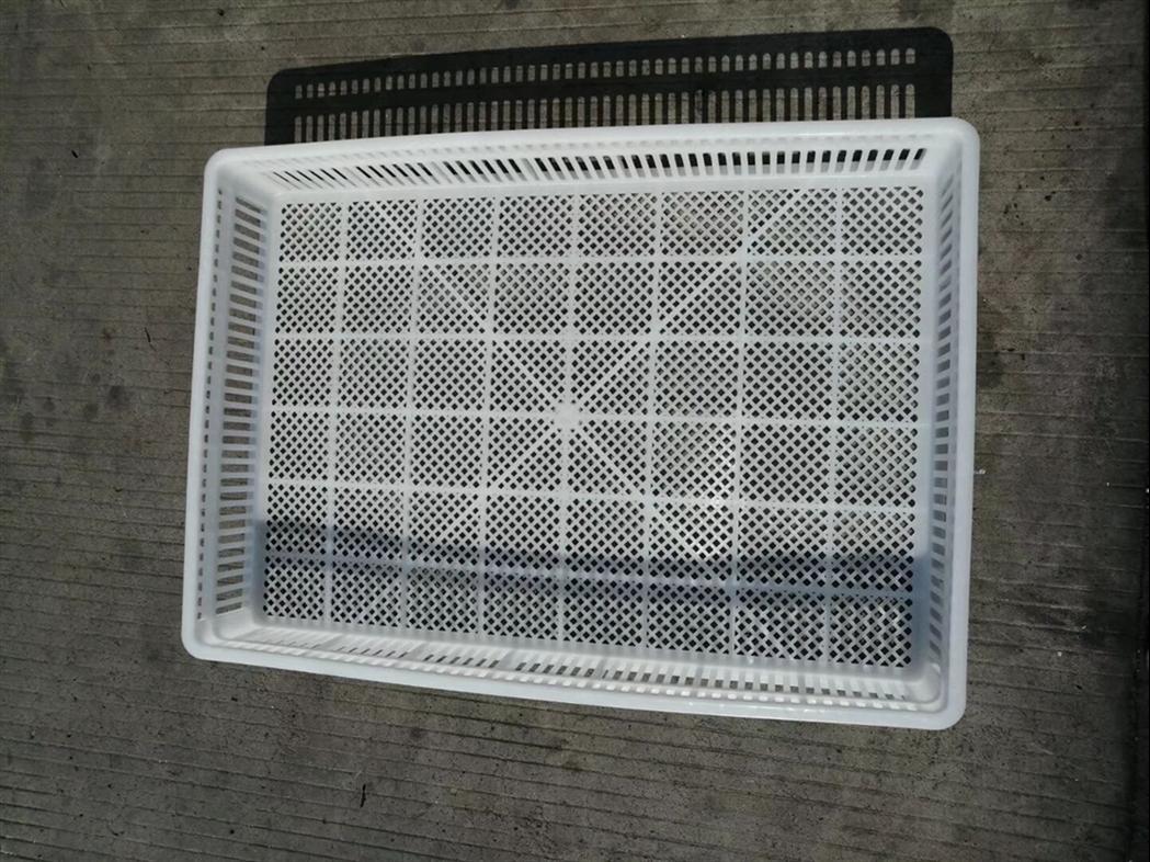 聊城塑料单冻器规格