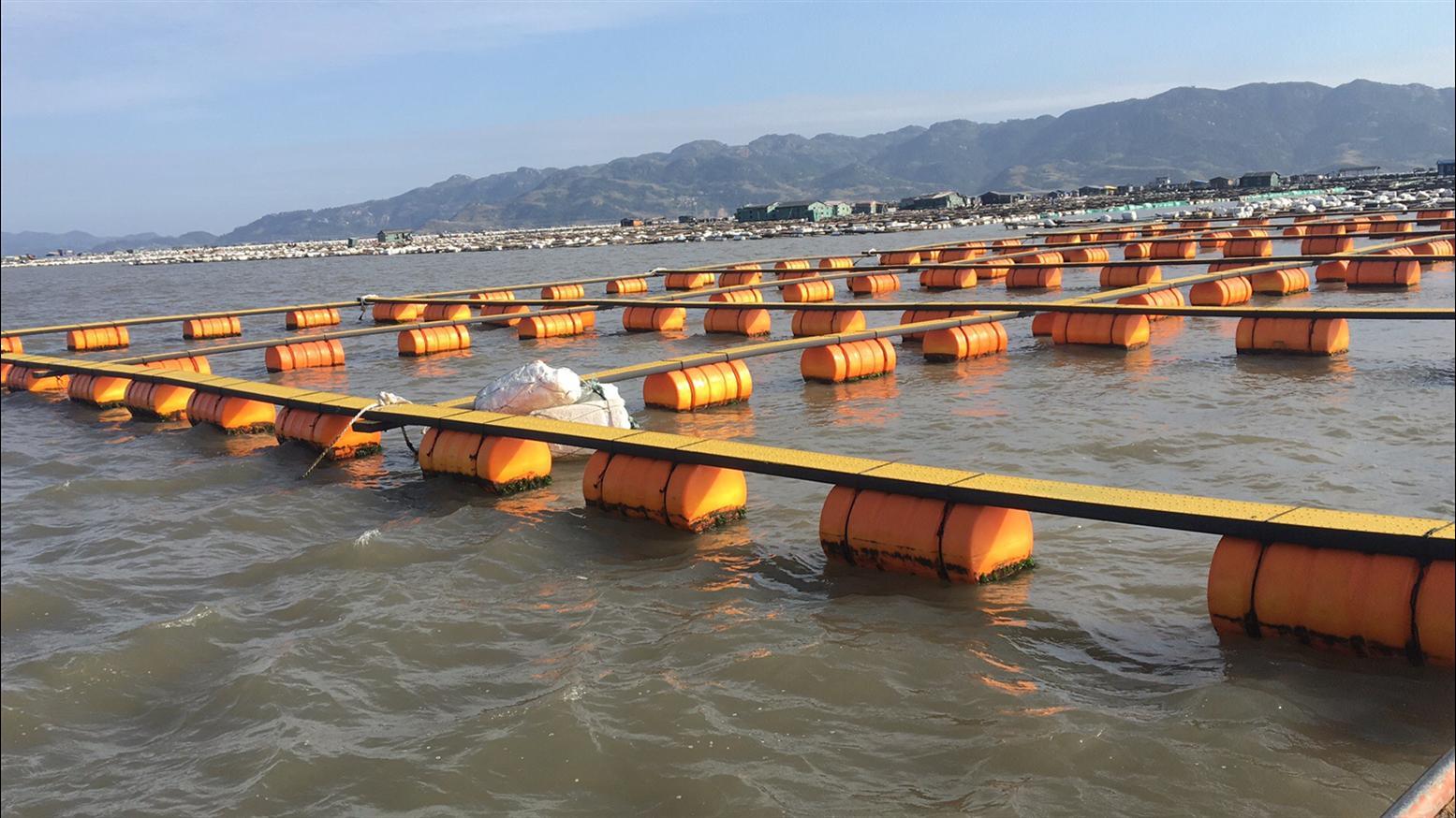 淮安海上警示浮标出售