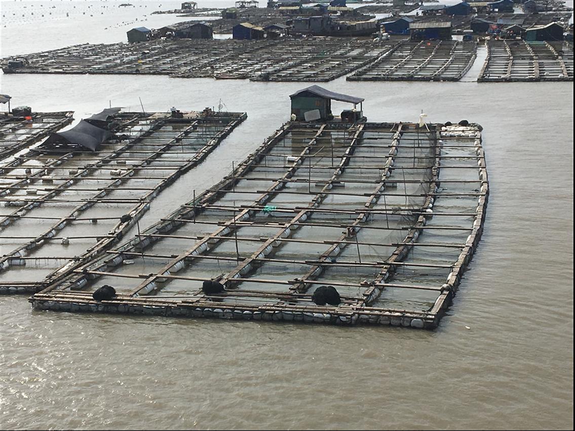 泰州海上警示浮标电话