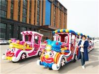宁南县商场电动小火车工厂