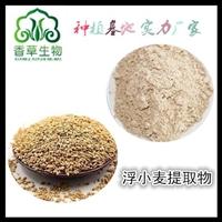 浮小麦提取物10:1 20:1  浮小麦膳食纤维  浮小麦粉